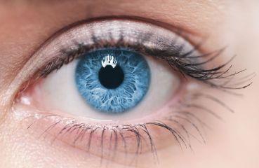 Alles rund um den Augenmuskel – Funktion, Aufbau und mögliche Probleme