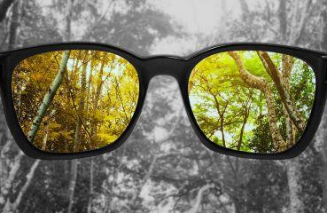 Farbenblindheit? Arten, Ursachen, Symptome und Test